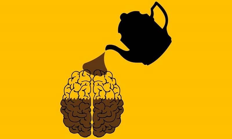 Caffeine and Brain