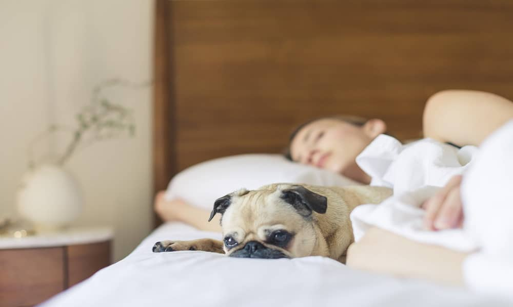 What causes snoring in females